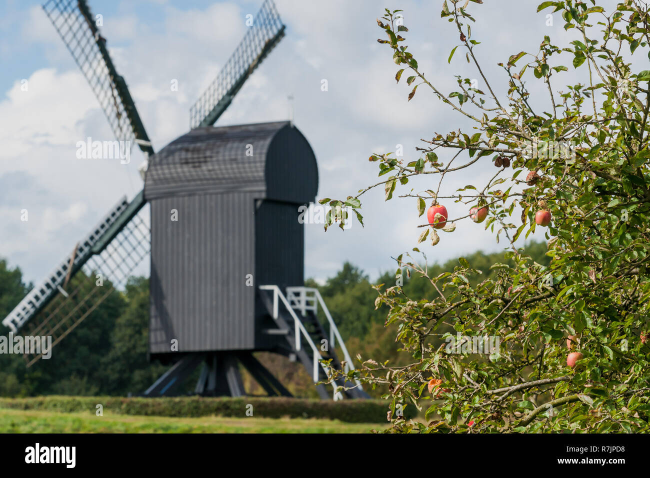 Old windmill in the renovated historic fortress town of Bourtange in Groningen, the Netherlands. - Stock Image