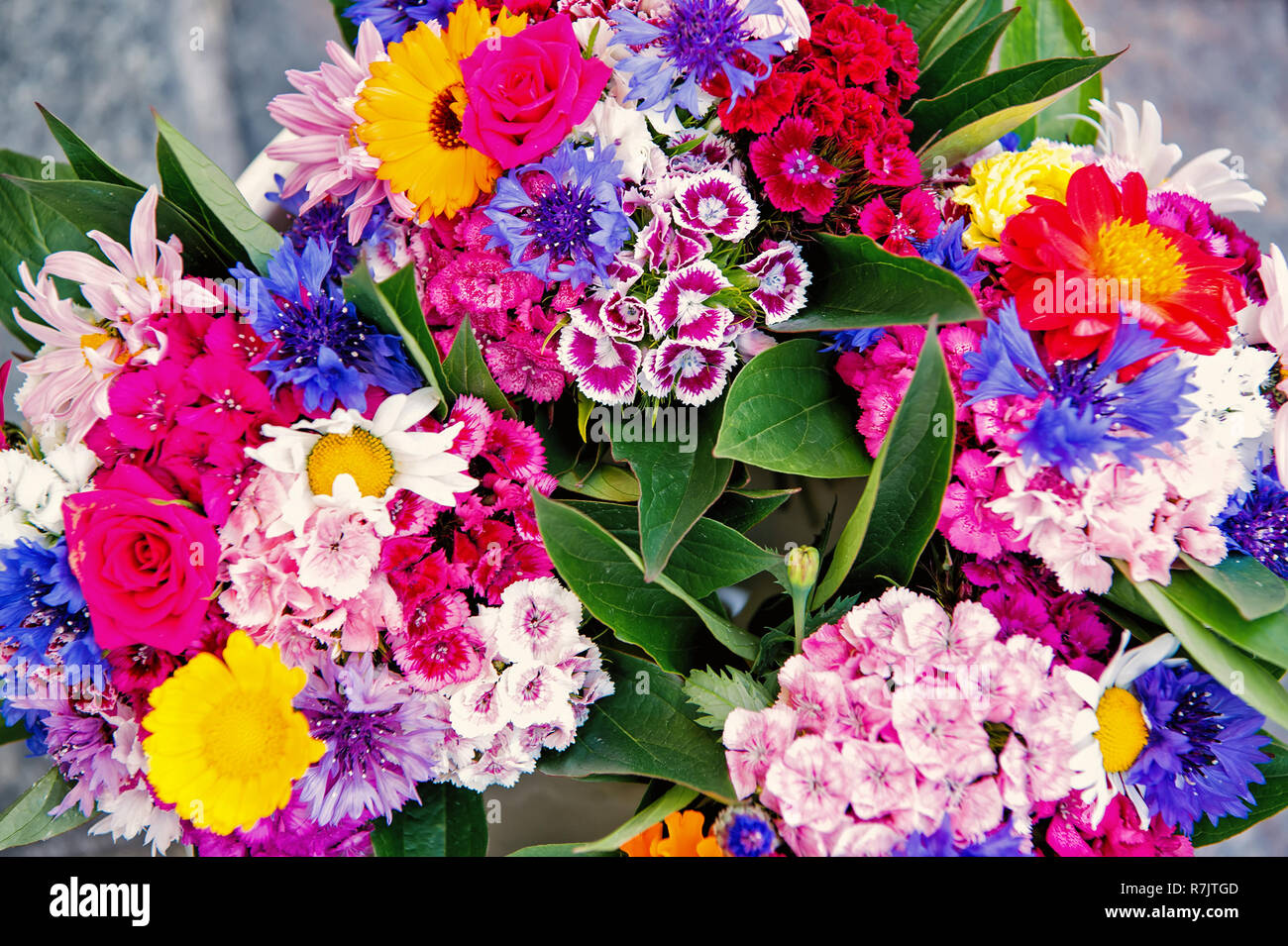 Flower bouquet in krakow, poland on colorful floral background. Blossom, beauty, flourishing concept - Stock Image