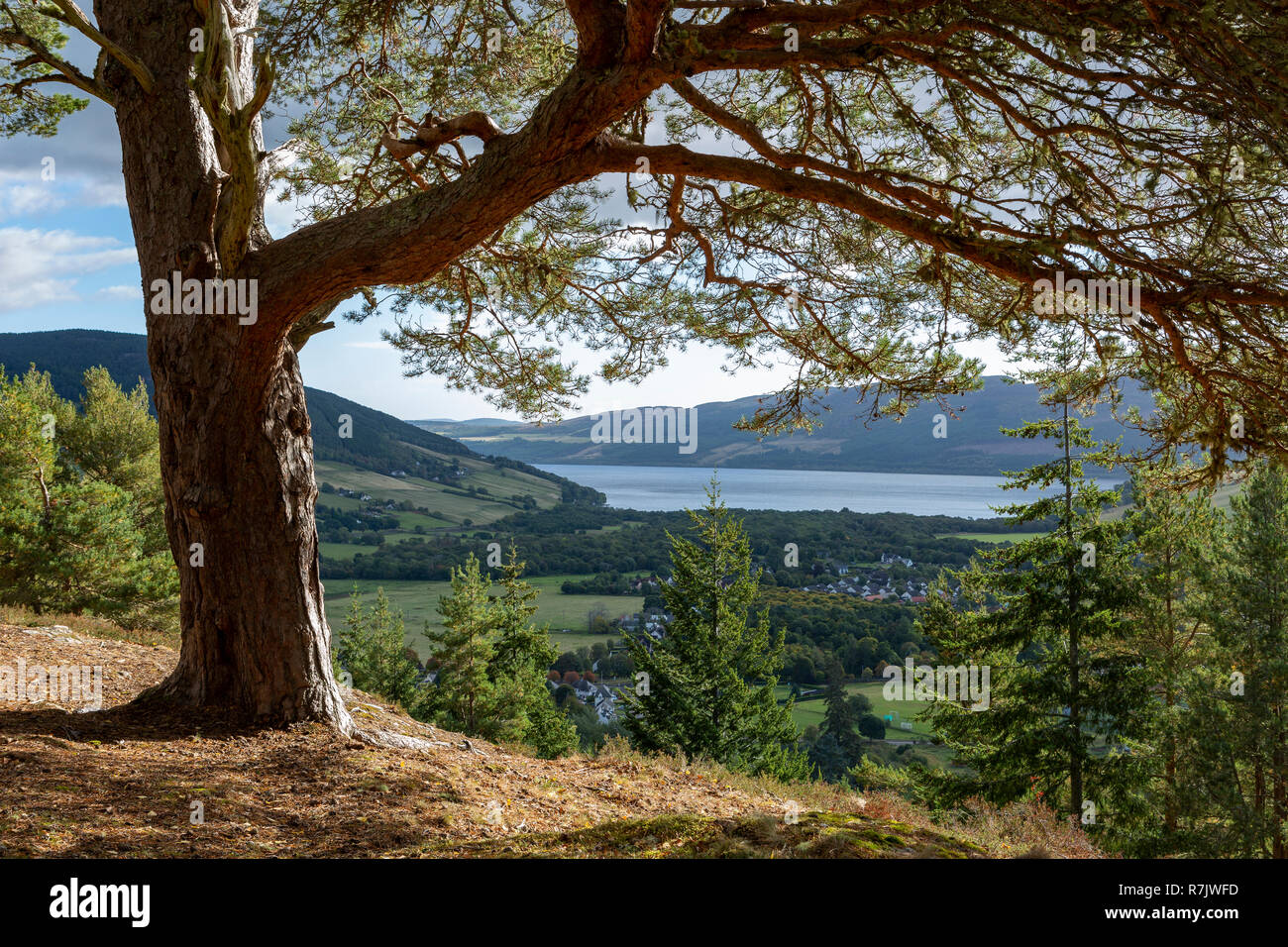 Urquhart Bay and Loch Ness from the Craigmonie Viewpoint, Drumnadrochit, Scotland - Stock Image