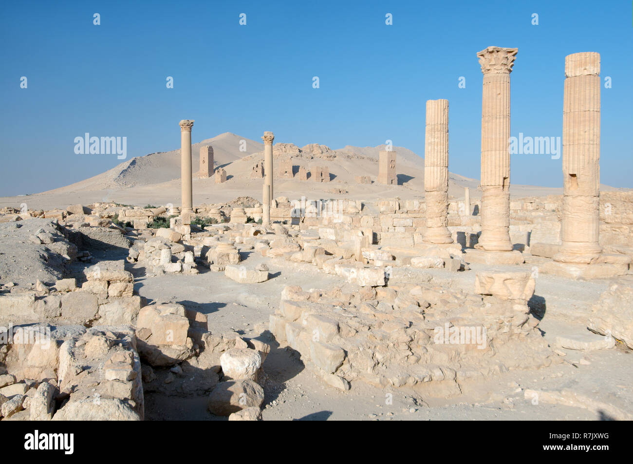 Ruins of the ancient city of Palmyra, Palmyra District, Homs Governorate, Syria - Stock Image