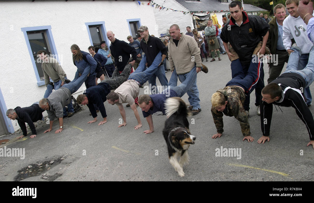 An eager dog is looking for a partner to enter the wheelbarrow race at  the  small hamlet of Knoydart's annual gala day in the north west highlands of Scotland. Knoydart sits on the Knoydart peninsula and can only be reached by boat or on foot. - Stock Image
