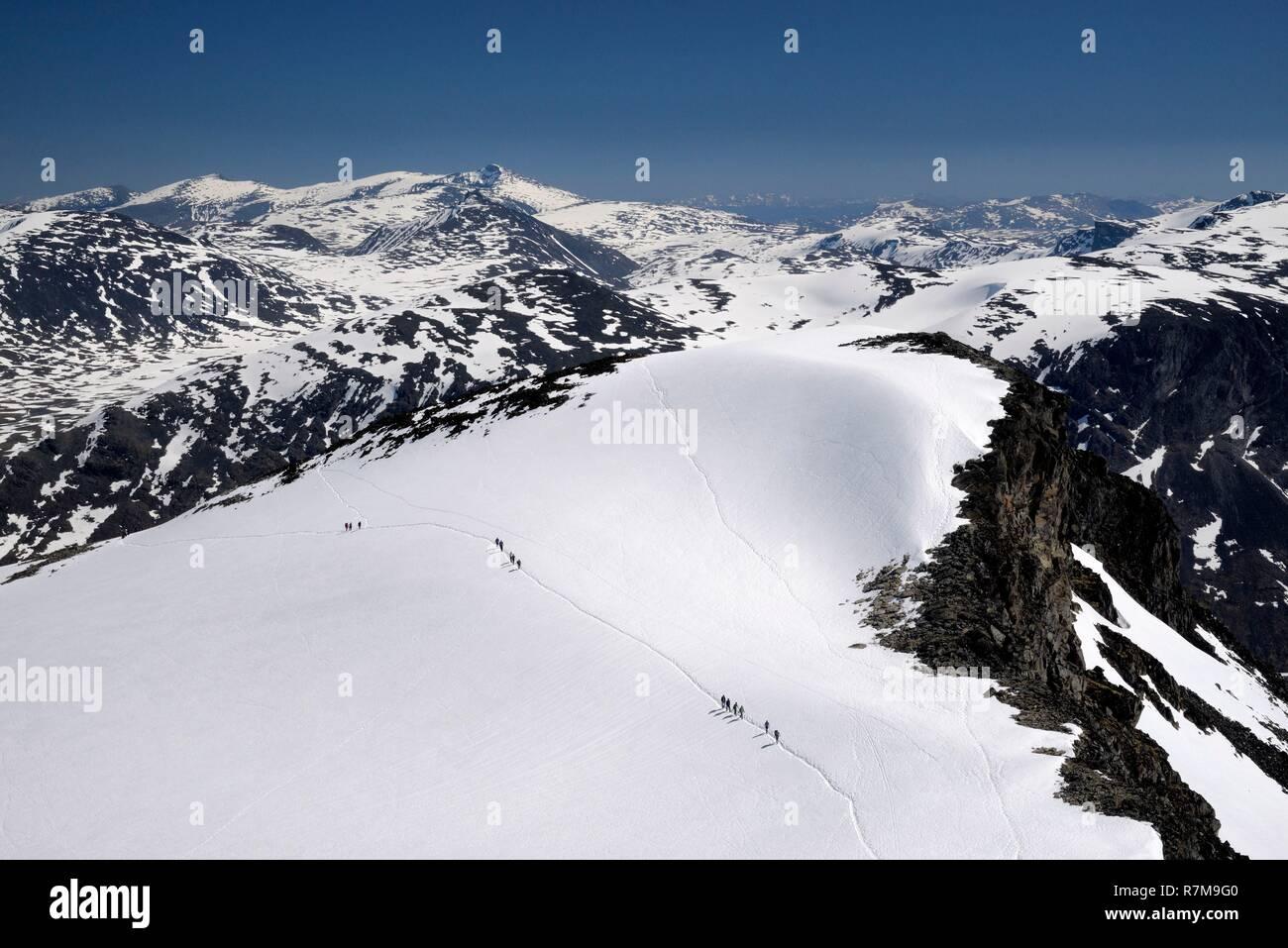 Norway, Oppland, Vaga, Jotunheimen National Park, trekkers climbing Galdhopiggen, the tallest mountain in Norway and Scandinavia at 2469m Stock Photo