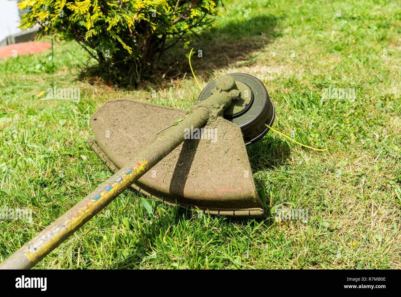 brushcutter meadow tool - Stock Image