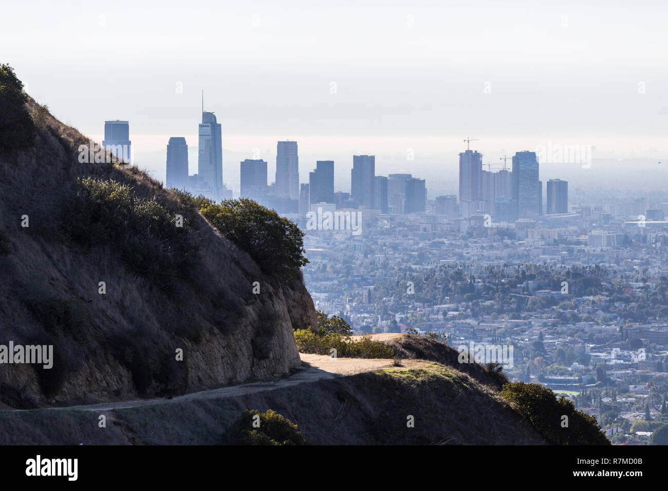 Early morning view of Griffith Park trails and downtown towers in Los Angeles, California. Stock Photo