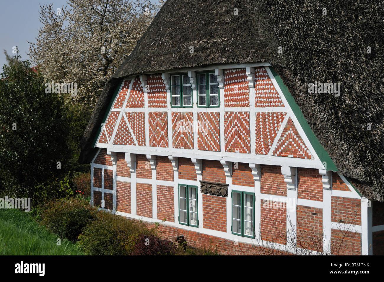 Altes Land, Niedersachen, Deutschland, Germany, Lower Saxony - Stock Image