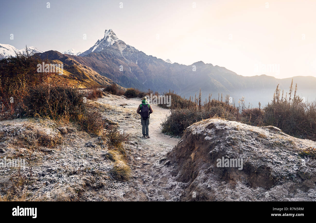 Tourist with backpack enjoying the view of snowy Himalayan Mountain Machapuchare in Nepal - Stock Image