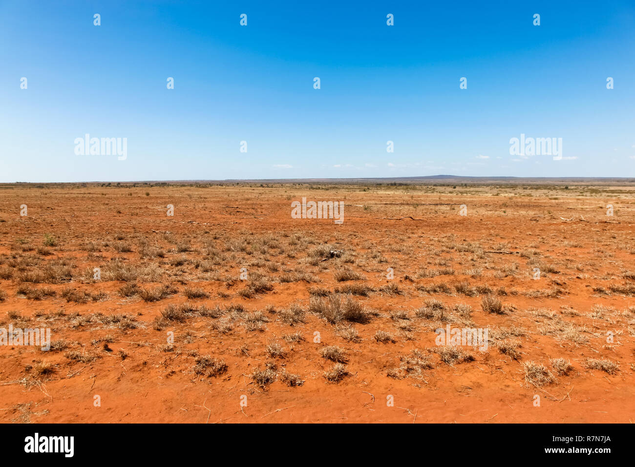 Flat orange drought effected land in central Queensland south of Charters Towers. Central Queensland is a remote place and subject to many droughts. - Stock Image