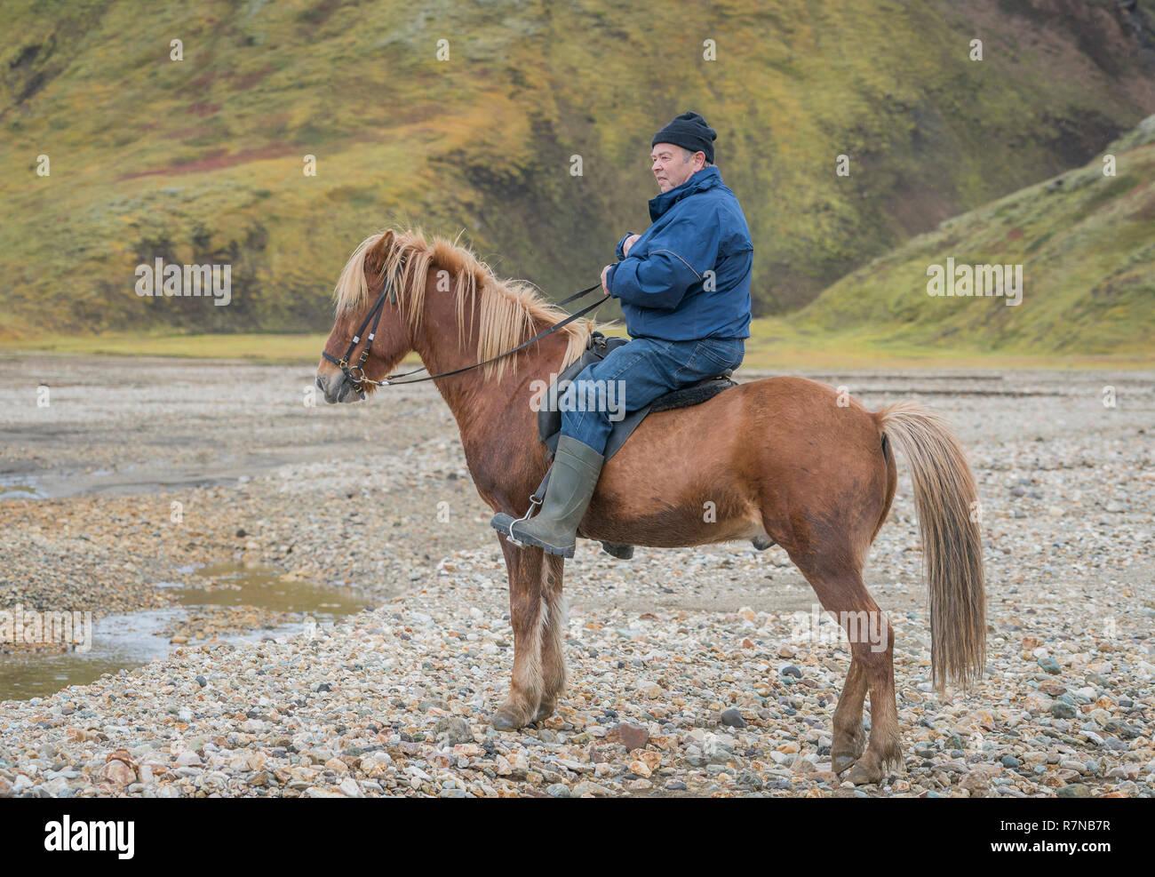 Portrait of Icelandic Farmer on his horse, Landmannalaugar Central Highlands, Iceland - Stock Image