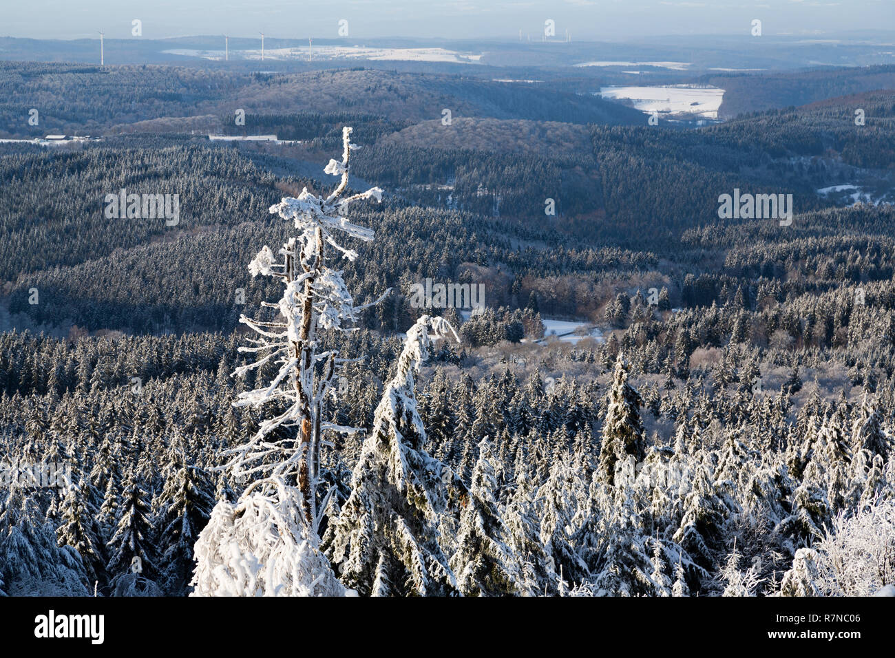 Panoramic scenic areal view from top of mountain landscapes winter valley, snow-capped peaks of mountains and trees, hills. Concept Swiss Alps, Krasnaya Polyana, Sochi, Sheregesh, Austria - Stock Image