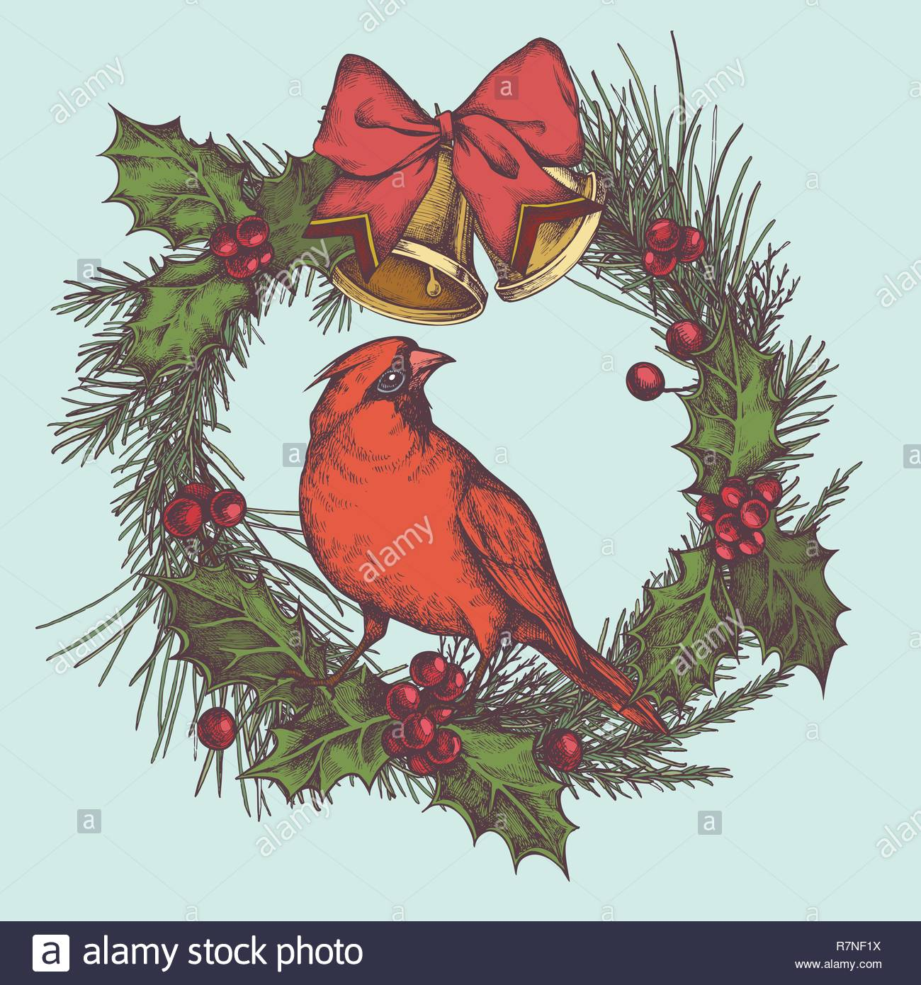 Vector composition with colored bells, jingles, cardinal, bow, rowan, lettering, pine branch, spruce, redwood - Stock Image