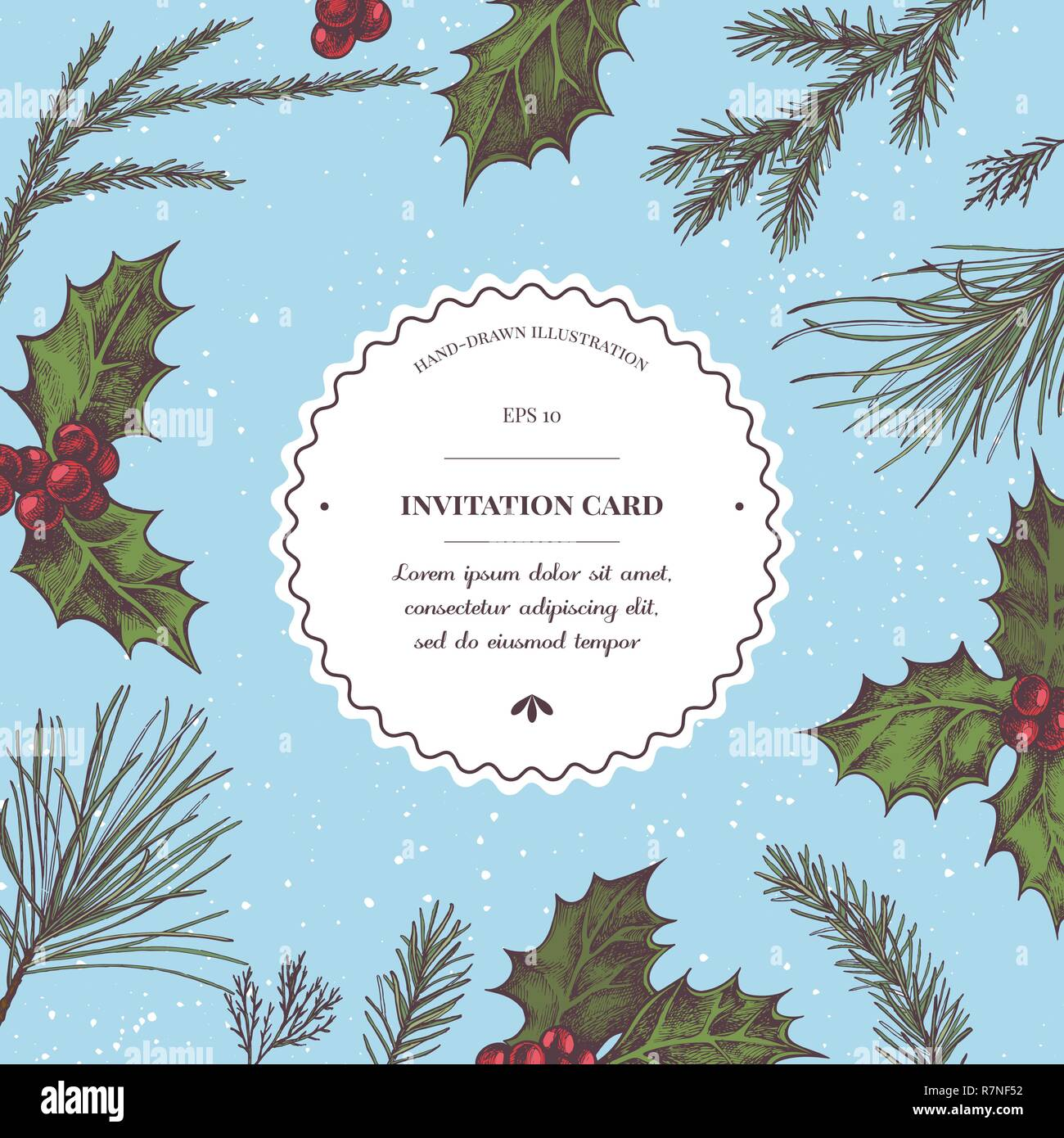 Vector composition with colored holly, pine branch, spruce, redwood - Stock Vector