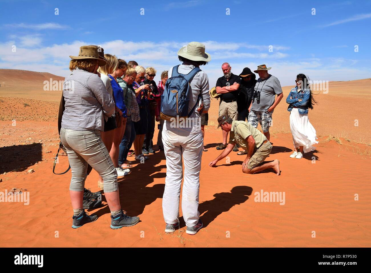 Namibia, Namib-Naukluft, Solitaire, a guided visit of the desert with Gideon Boesman David, a famous expert, about the desert and the Bushmen - Stock Image
