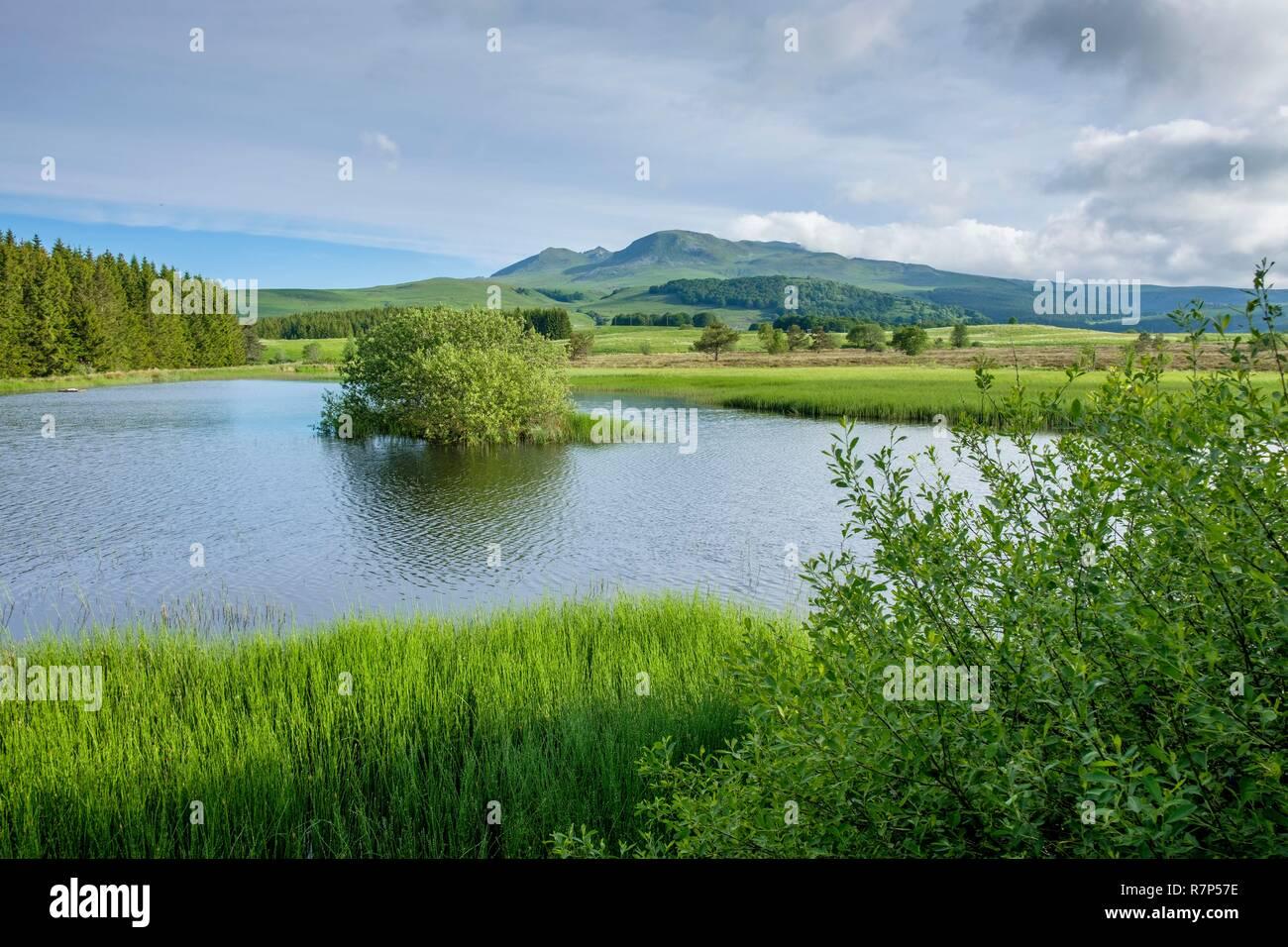 France, Puy de Dome, Parc Naturel Regional des Volcans d'Auvergne (Auvergne Volcanoes Natural Regional Park) - Stock Image