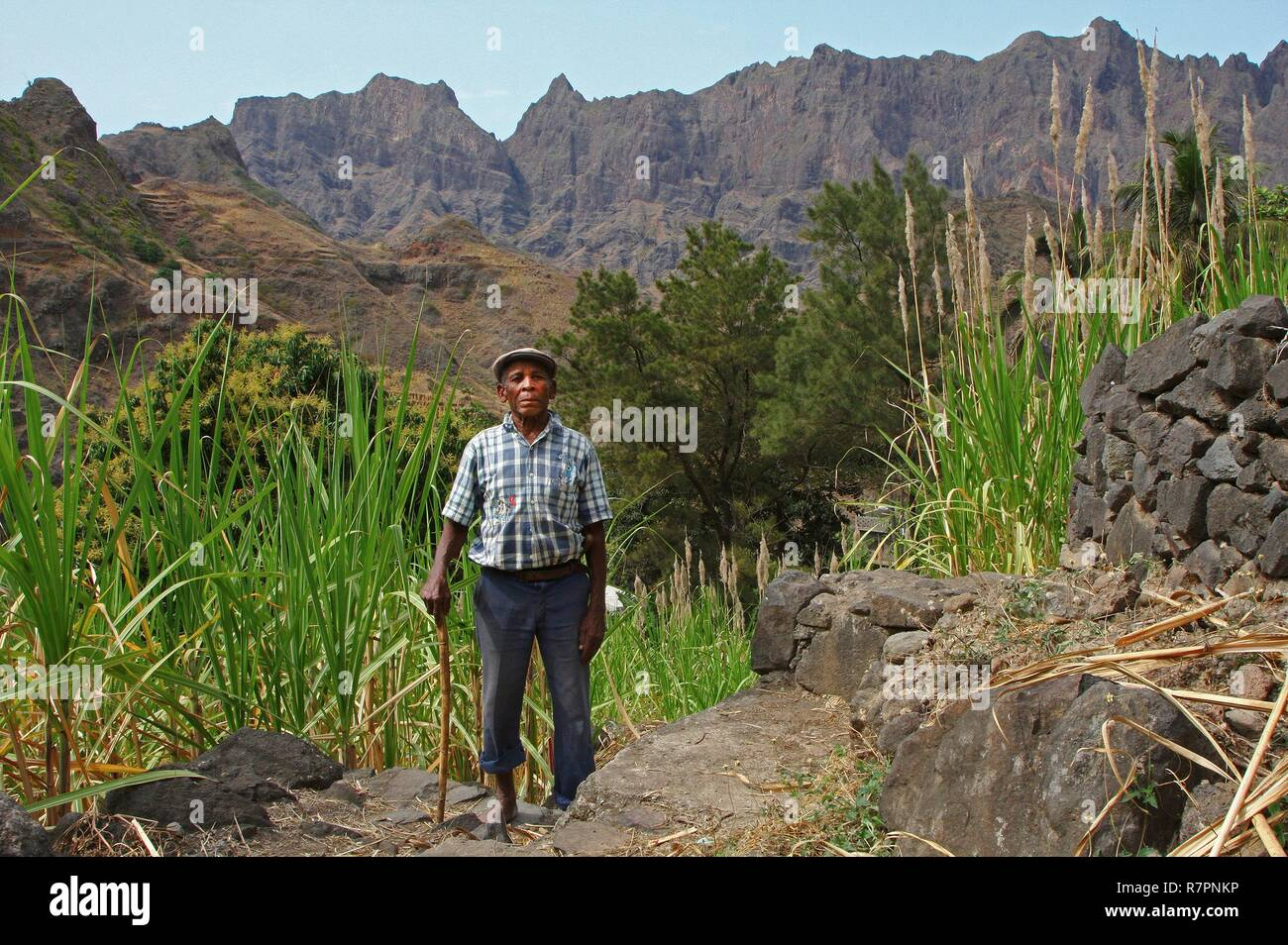 Cape Verde, Santo Antao, Coculi, Grandpa wearing cap on a mountain trail, in the middle of the cane fields - Stock Image