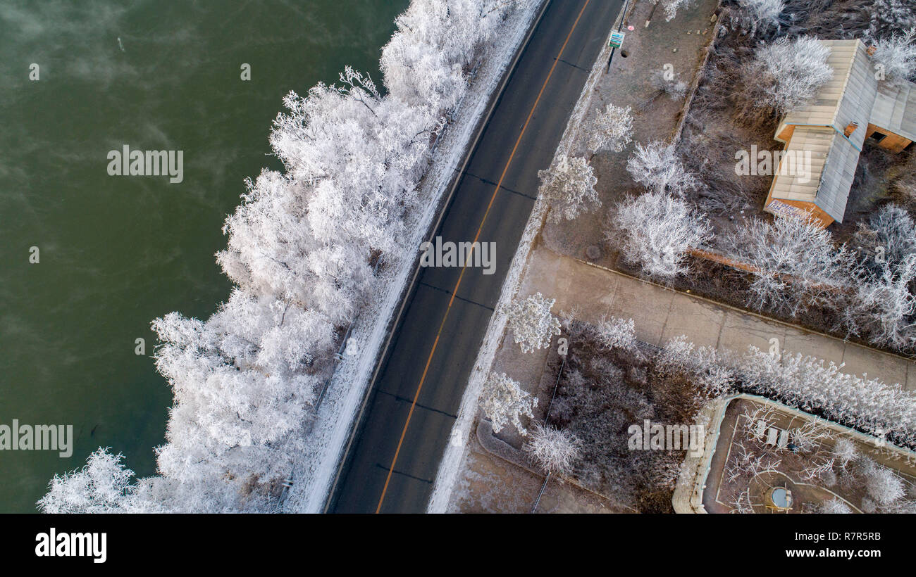 Jilin, China. 11th Dec, 2018. Photo taken on Dec. 11, 2018 shows the frosty trees at bank of Songhuajiang River in Jilin City, northeast China's Jilin Province. Credit: Zhu Dapeng/Xinhua/Alamy Live News - Stock Image