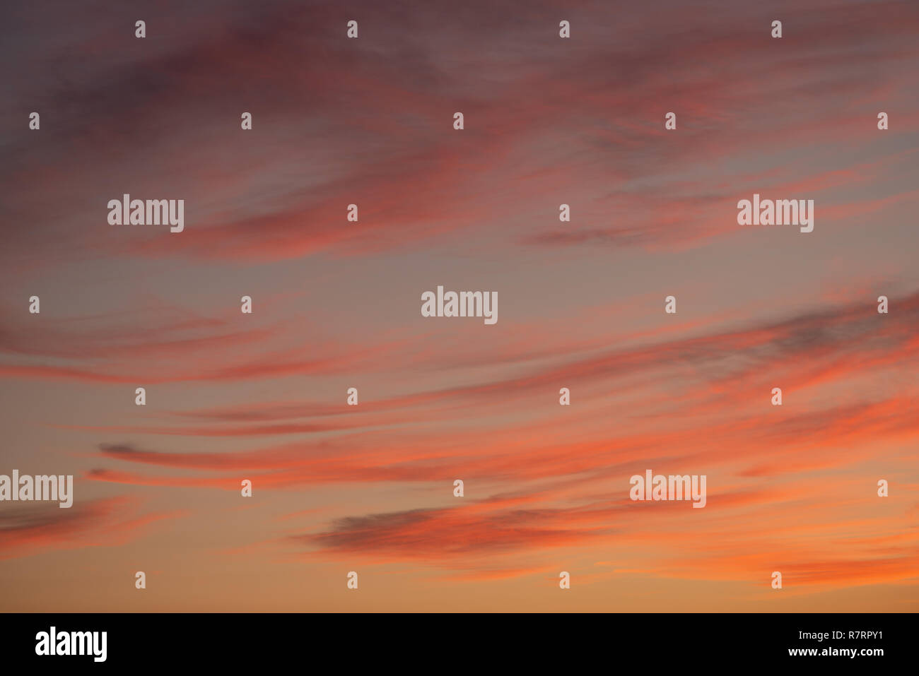 Soft muted pink orange magenta clouds and sky at dusk after sunset time. - Stock Image