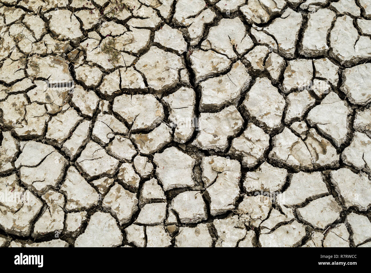 Drought climate change dryness in the soil - Stock Image