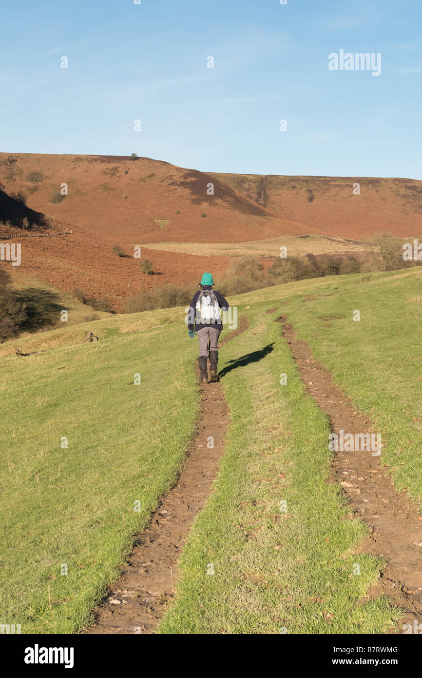 A walker heading through Horcum Slack near the Hole of Horcum in the North York Moors Stock Photo