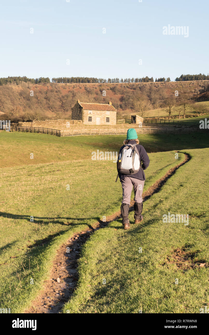 A walker at Low Horcum in the Hole of Horcum in the North York Moors - Stock Image