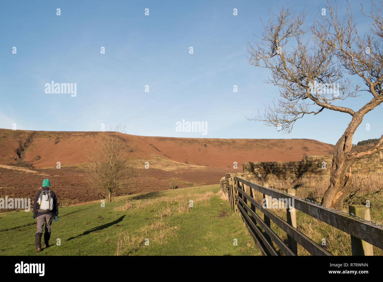 A walker at Low Horcum in the Hole of Horcum in the North York Moors Stock Photo