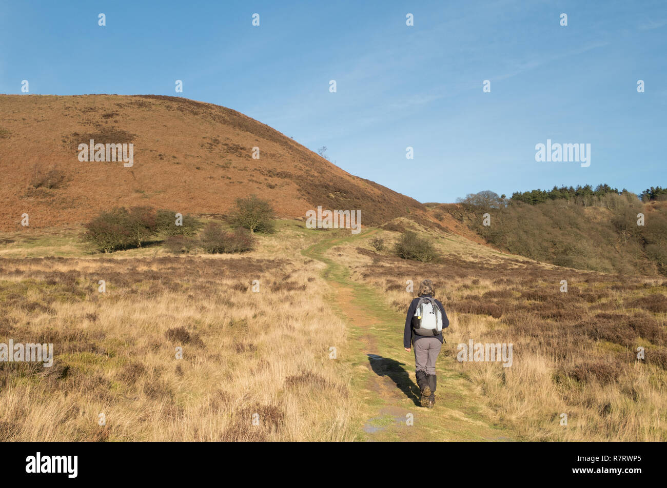 A walker in the Hole of Horcum in the North York Moors - Stock Image