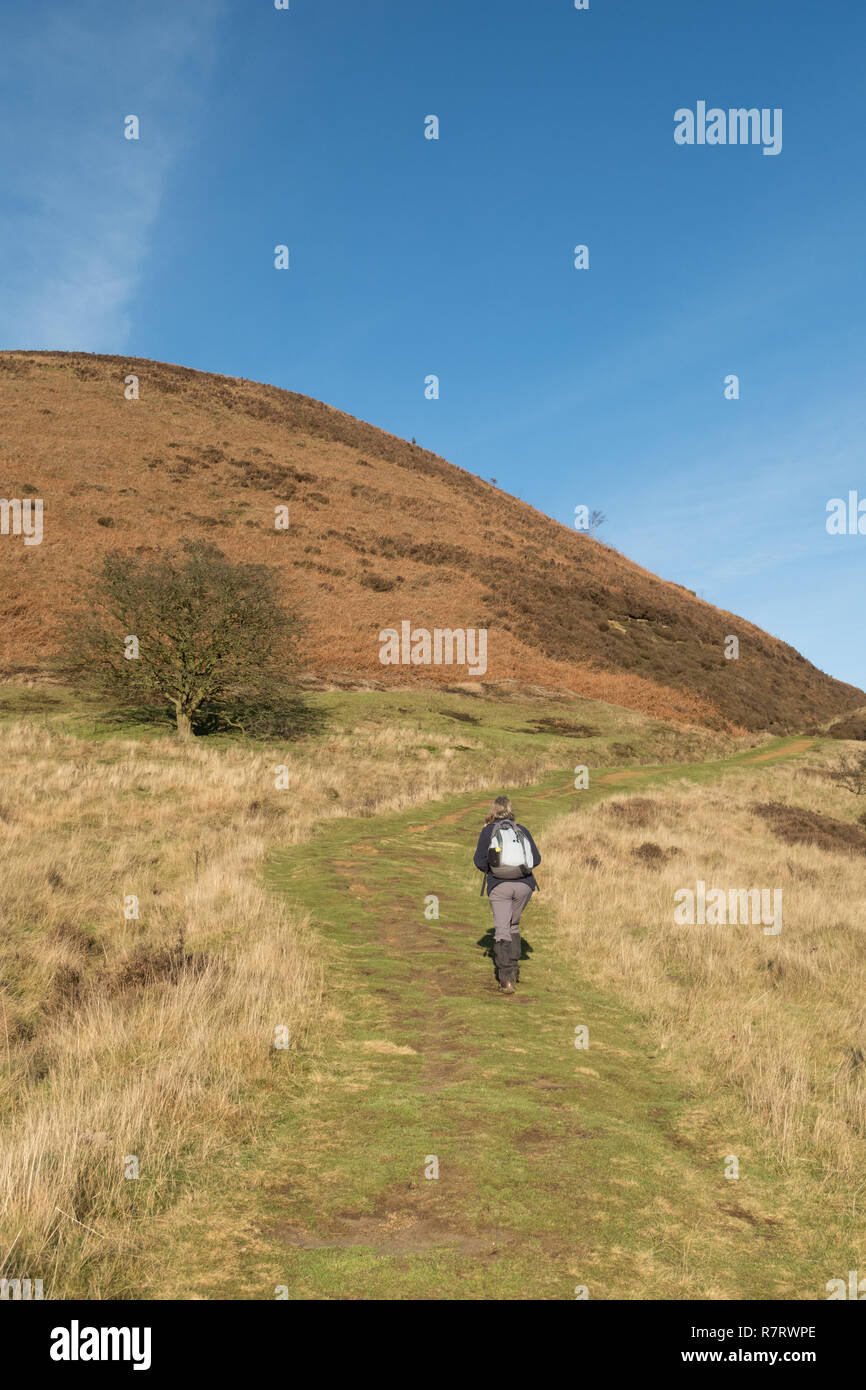 A walker in the Hole of Horcum in the North York Moors Stock Photo