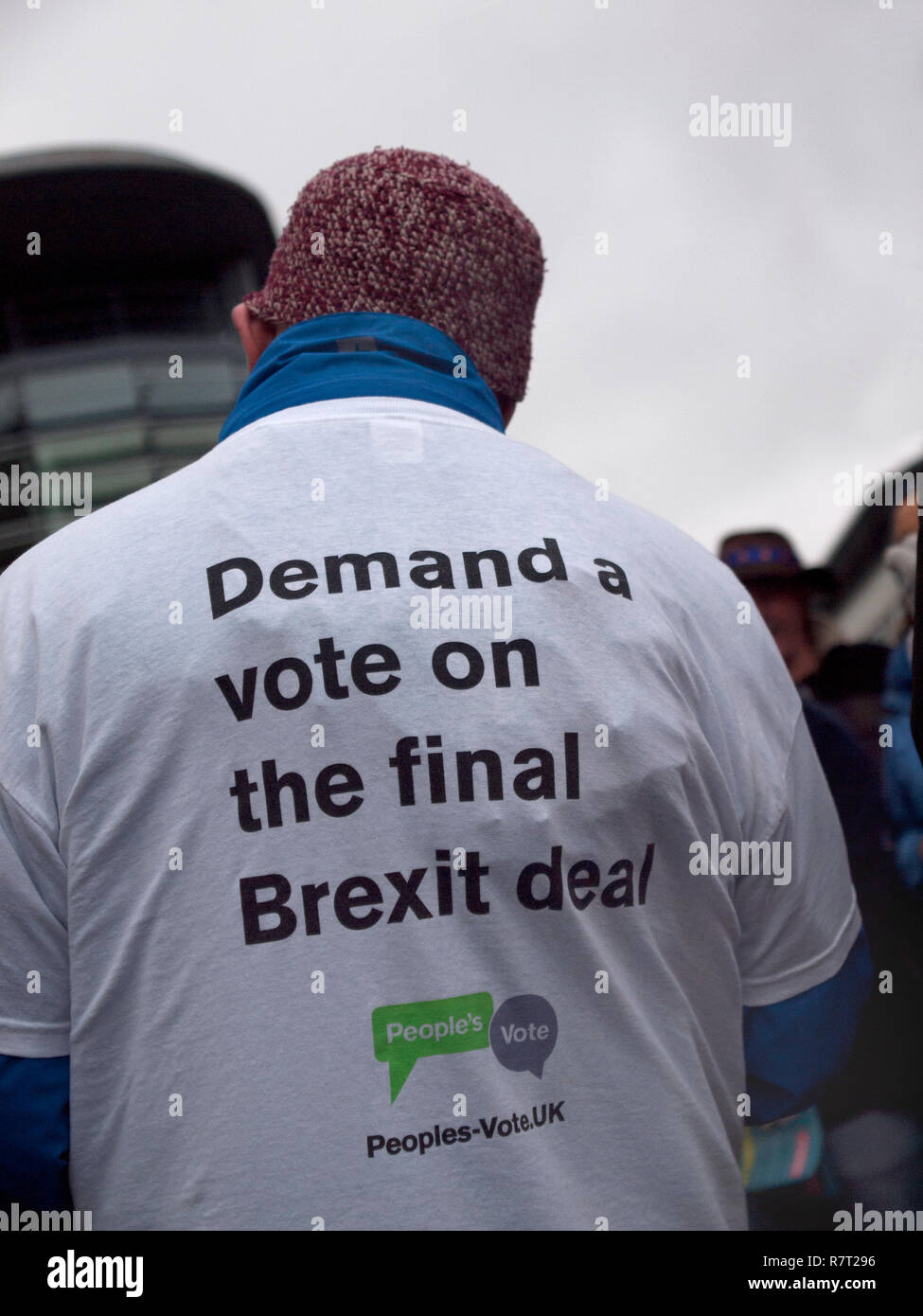 A protestor against Brexit in Brighton - Stock Image