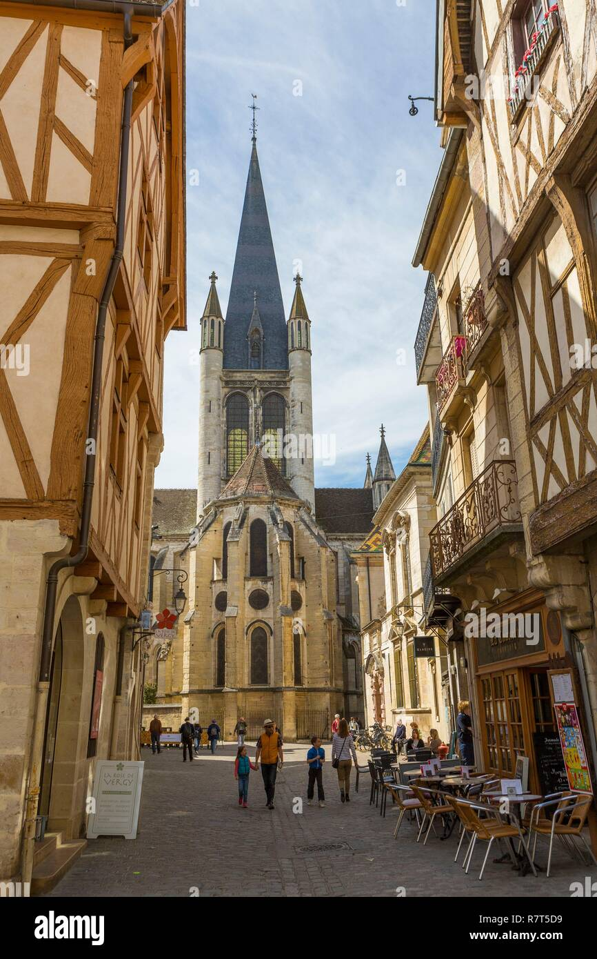 France, Cote d'Or, Cultural landscape of Burgundy climates classified UNESCO World Heritage, Dijon, Notre Dame church Stock Photo