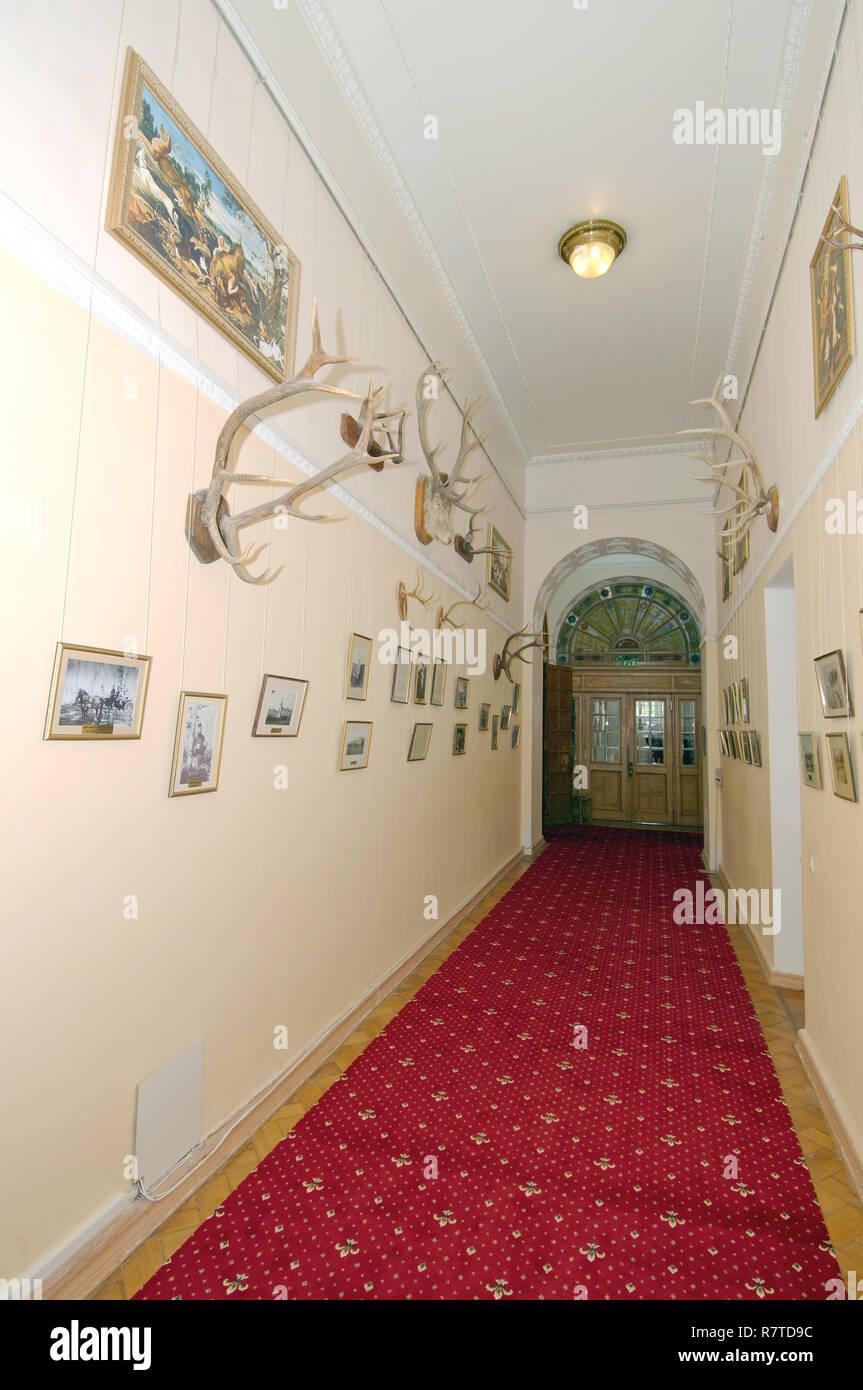 Room of trophies, Livadia Palace, Livadiya, Yalta, Crimea, Ukraine - Stock Image