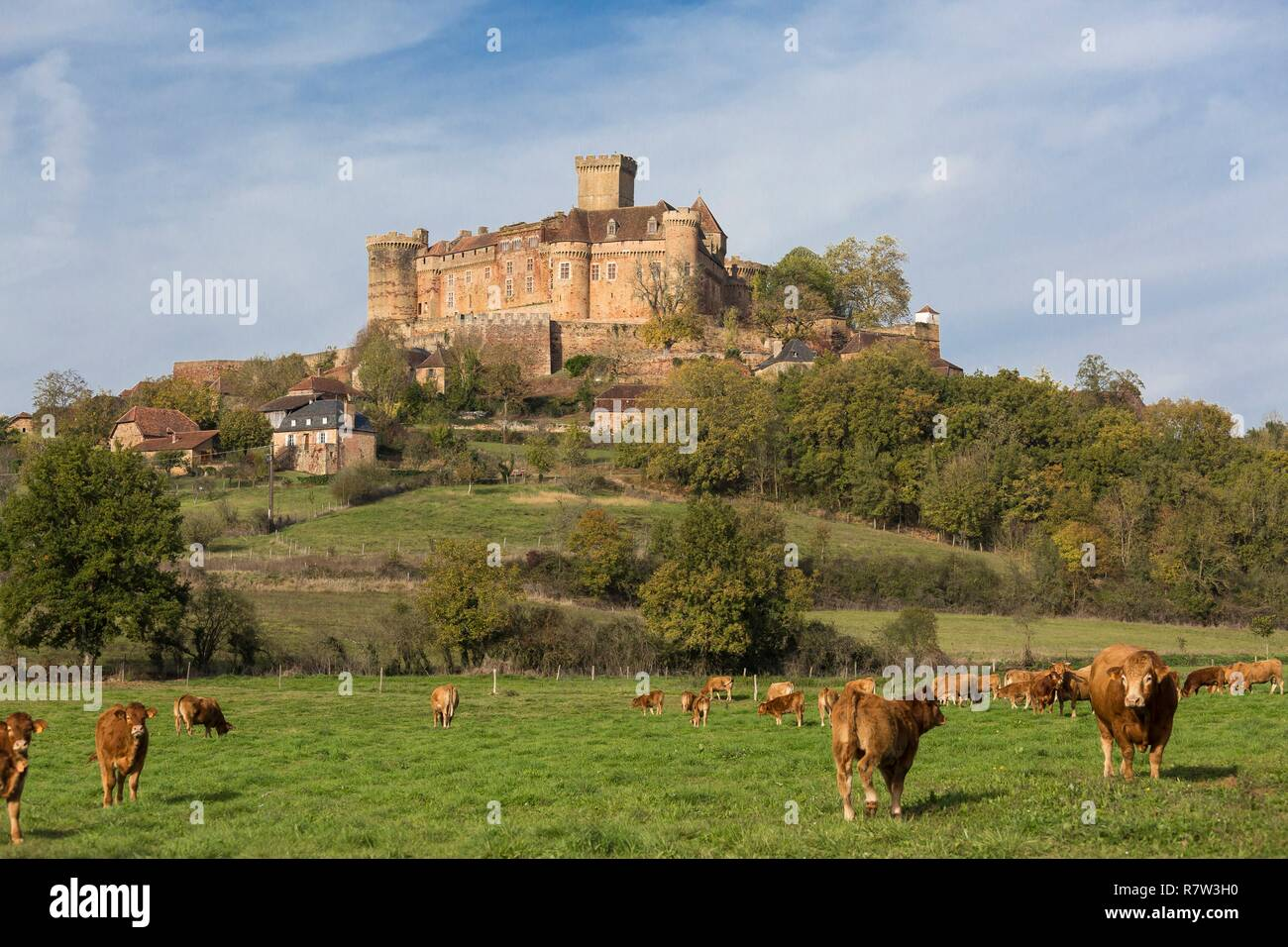 France, Lot, Prudhomat, Castelnau Bretenoux castle Stock Photo