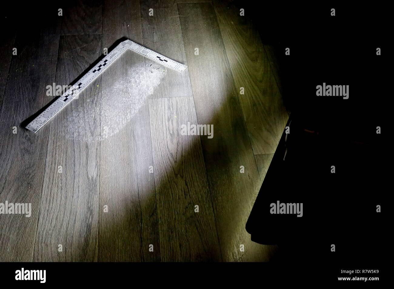 France, Val d'Oise, Pontoise, Criminal Investigation Institute of the National Gendarmerie, Forensic Division human fingerprint identification - Stock Image