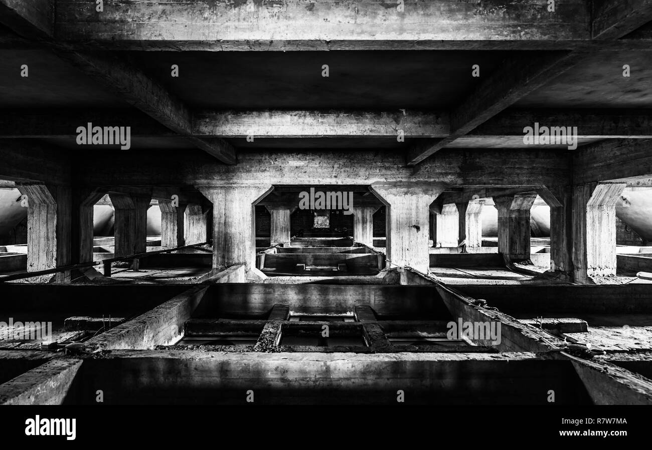 Concrete symmetric structure of the hughe suspended ceiling of the Saint Susanna church - Stock Image