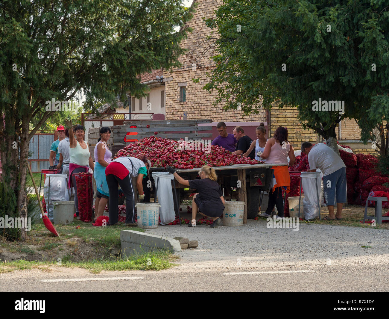Ruski Stock Photos Ruski Stock Images Alamy