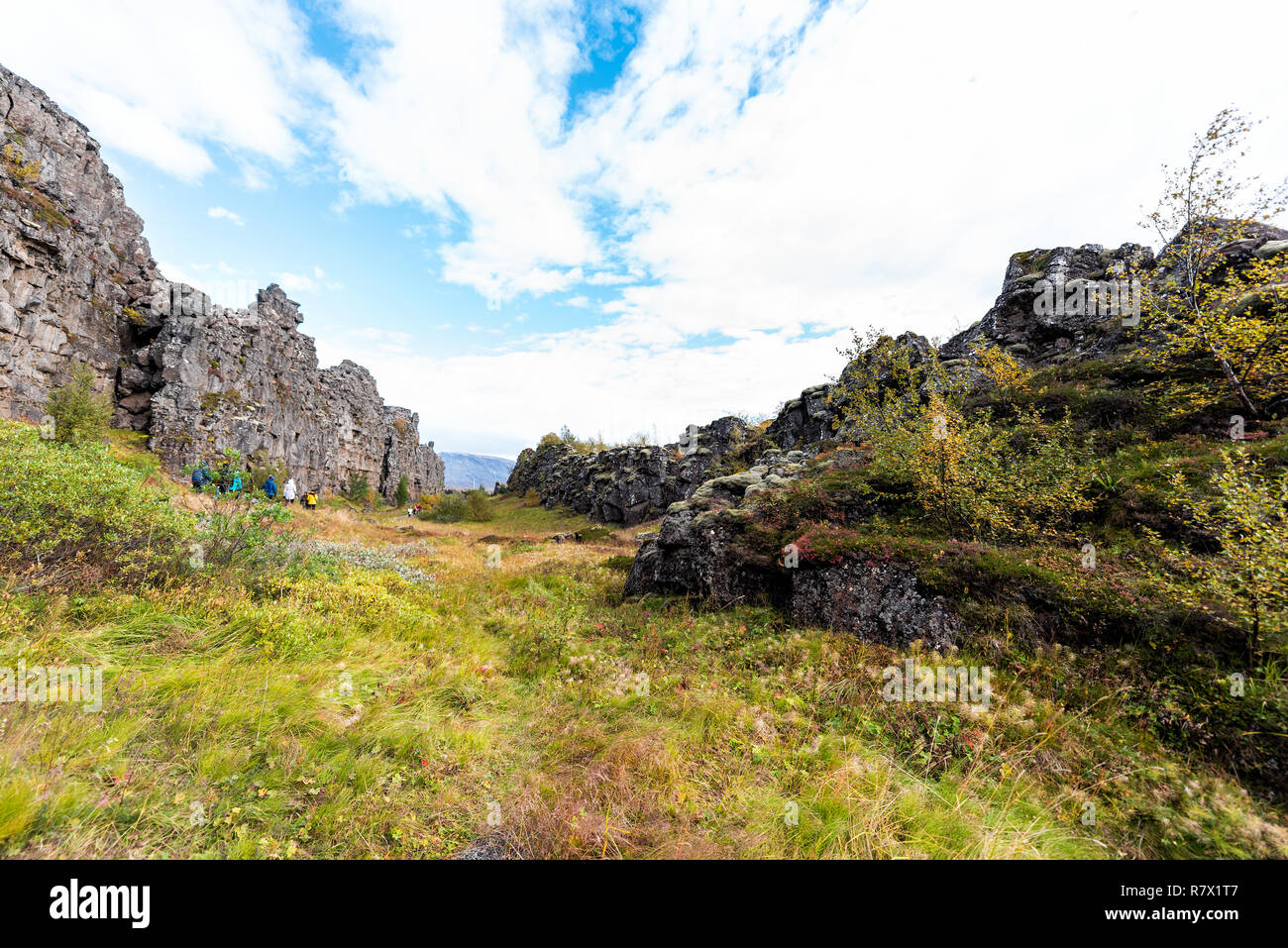 Thingvellir National Park grass autumn plants during day landscape, people walking on canyon trail in Iceland, Golden circle route Stock Photo