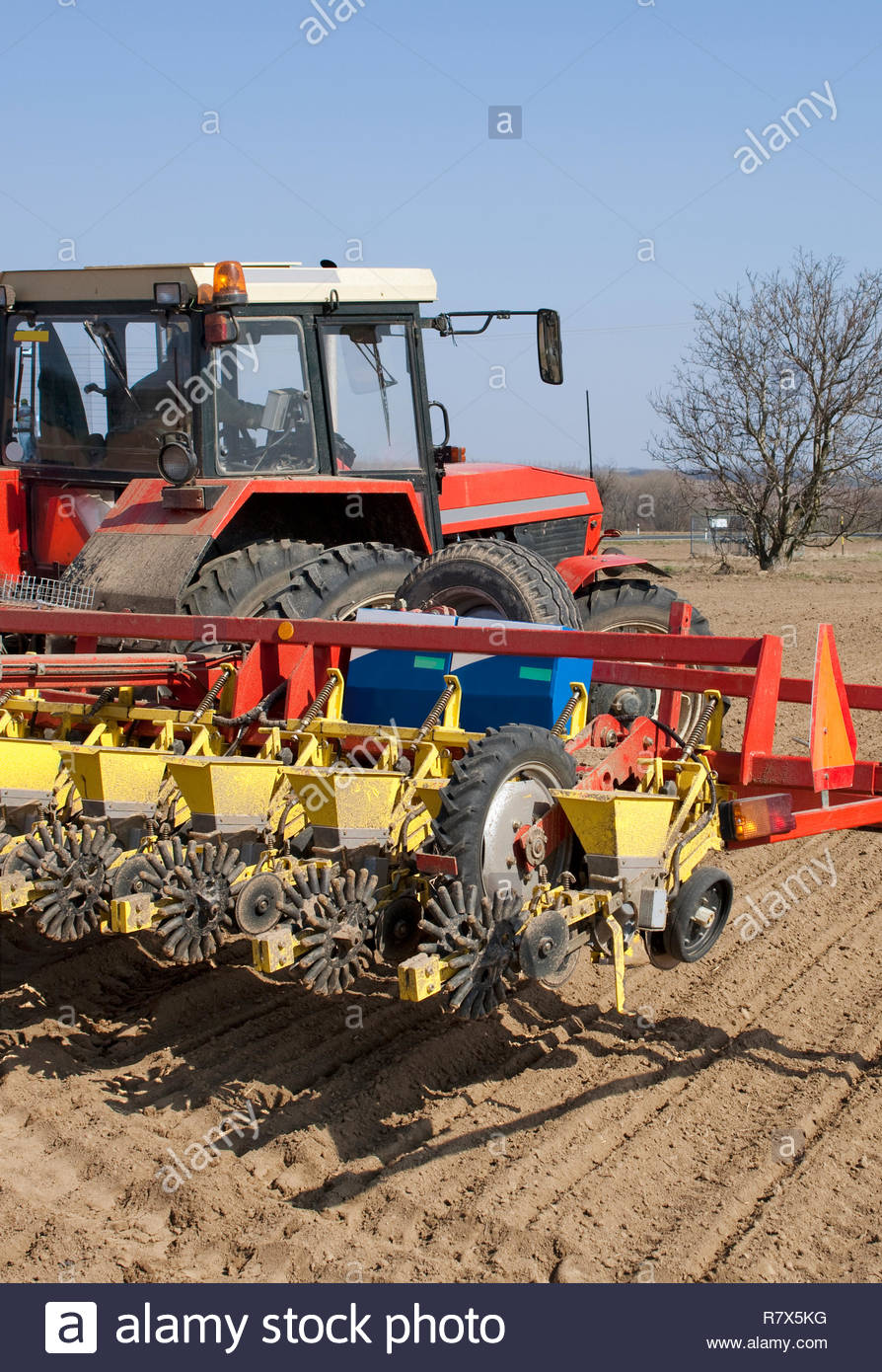 Sowing of beet by tractor and seeding machine. Stock Photo