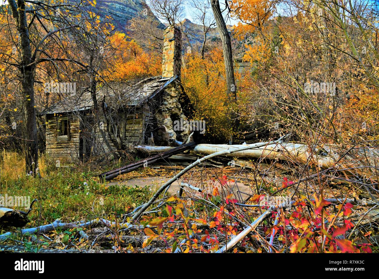 Abandoned cabin surrounded by fall colors. - Stock Image