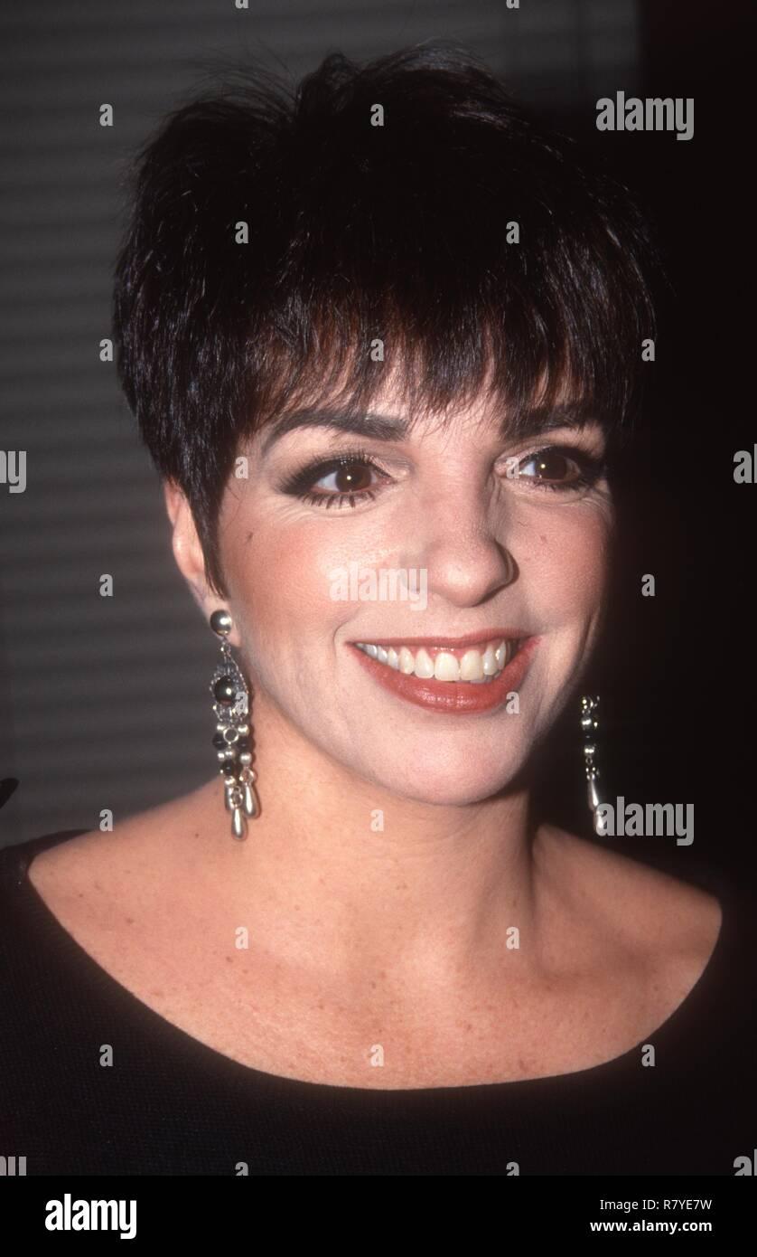 Liza Minnelli 1992 Photo By John Barrett/PHOTOlink Stock