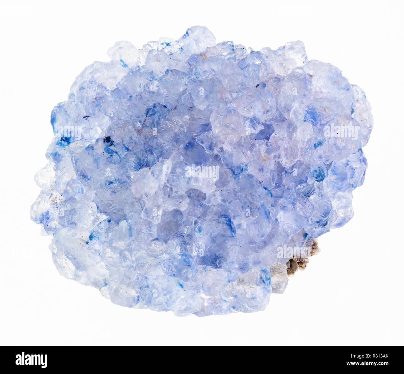 macro photography of natural mineral from geological collection - rough celestine (celestite) stone on white background - Stock Image