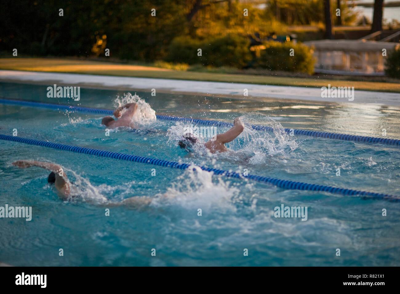 Swimming race - Stock Image