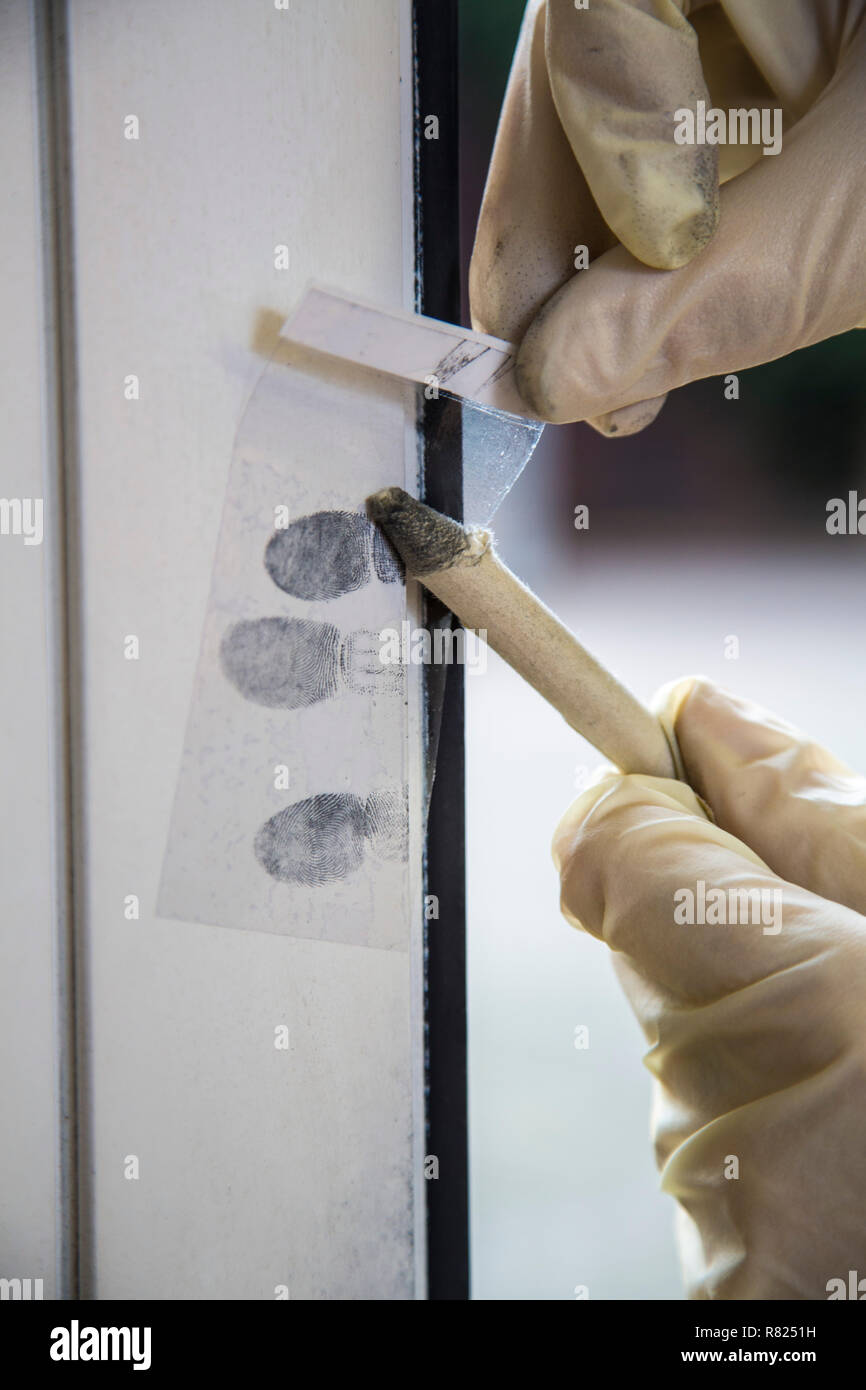 Fingerprints on a window, forensics after a break-in, burglary, Germany - Stock Image