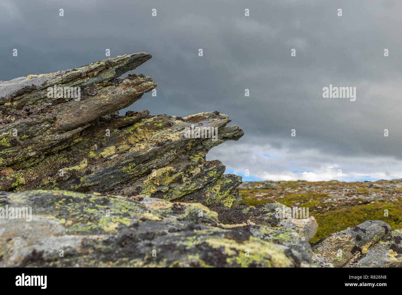 Pointy rock formations with lichens - Stock Image
