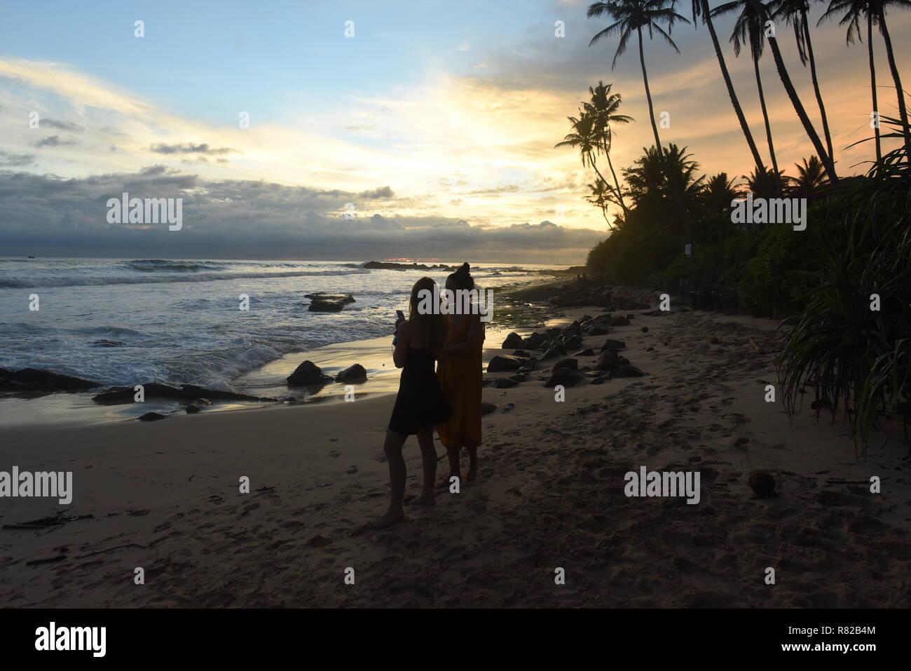sunset on coconut plantation, gurubebila beach, Midigama, Sri Lanka - Stock Image