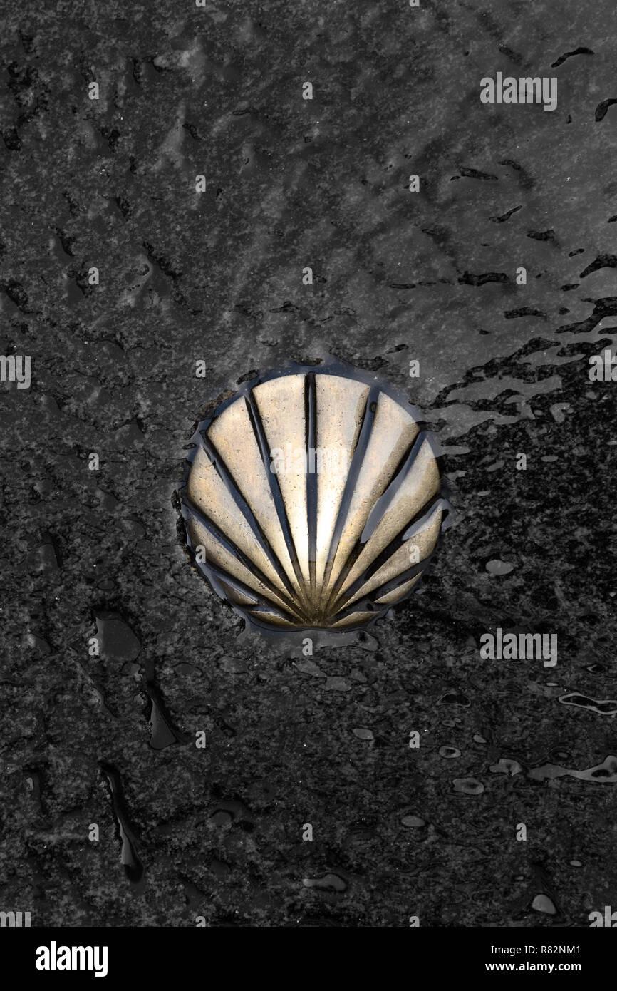 St James Way Shell Symbol. Camino de Santiago. Pilgrimage to Santiago de Compostela, Galicia, Spain - Stock Image