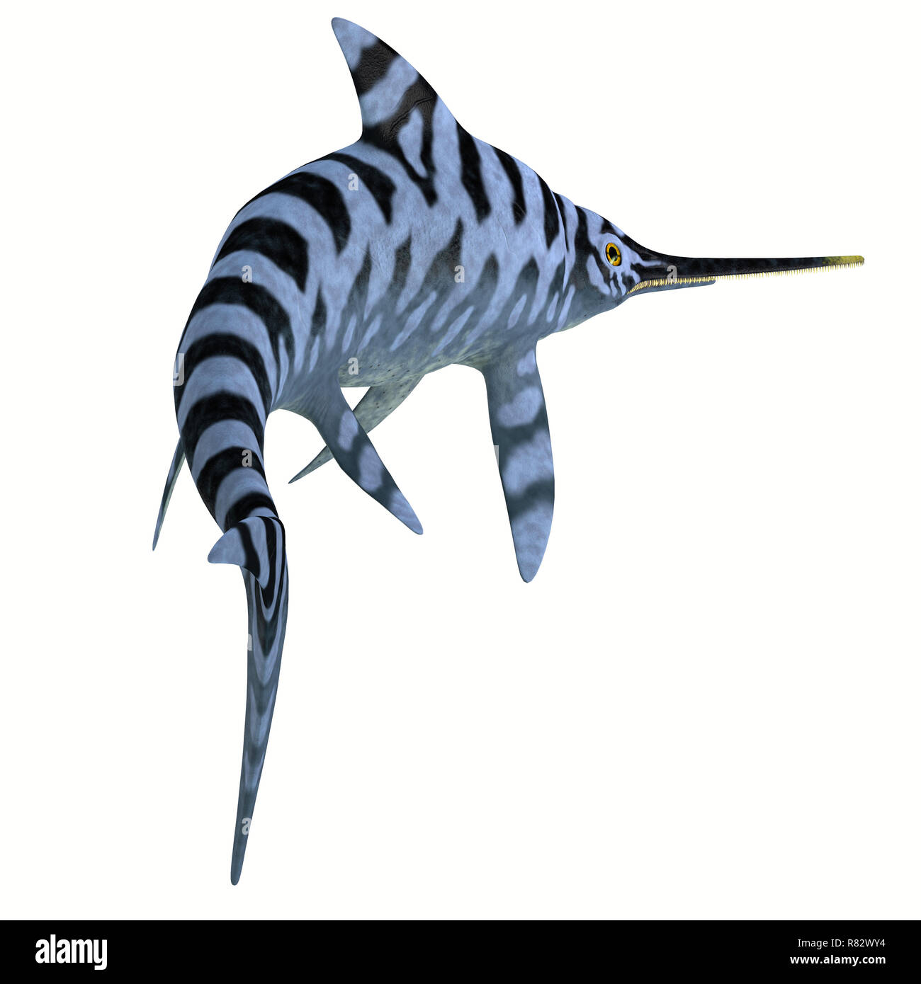 Eurhinosaurus Reptile Stripped Pattern - Eurhinosaurus was a carnivorous Ichthyosaur reptile that lived in Europe during the Jurassic Period. - Stock Image