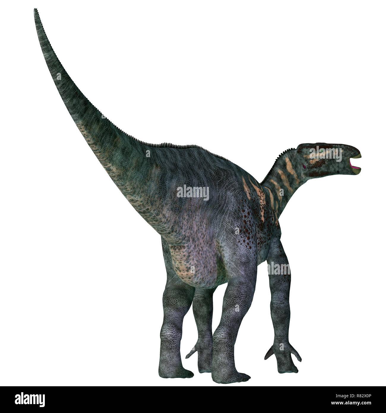 Iguanodon Dinosaur Tail - Iguanodon was a herbivorous ornithopod dinosaur that lived in Europe during the Cretaceous Period. - Stock Image