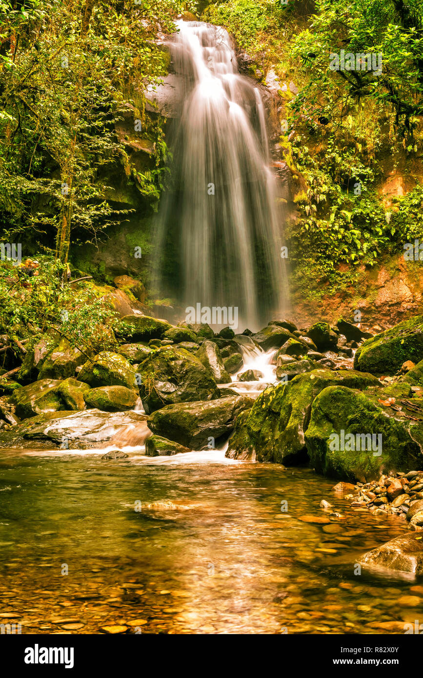 The Lost Waterfall located on the slopes of Volcan Baru near Boquete in Panama. There are three waterfalls on this trail. It is fall number three. Stock Photo