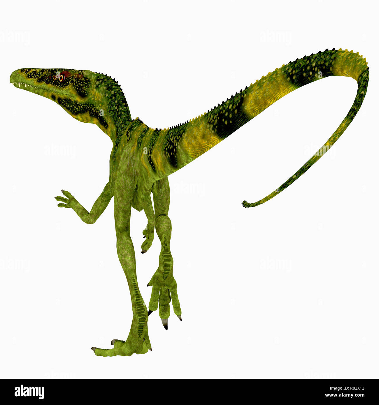 Juravenator Dinosaur Tail - Juravenator was a carnivorous theropod dinosaur that lived in Germany during the Jurassic Period. - Stock Image