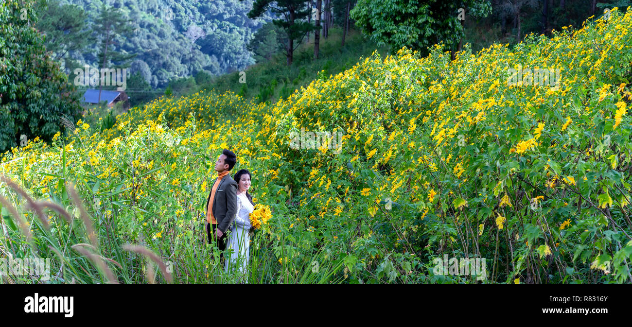 The couple together on hillside covered wild sunflowers blooming colorful beautiful nature scene, happiness humans before nature - Stock Image