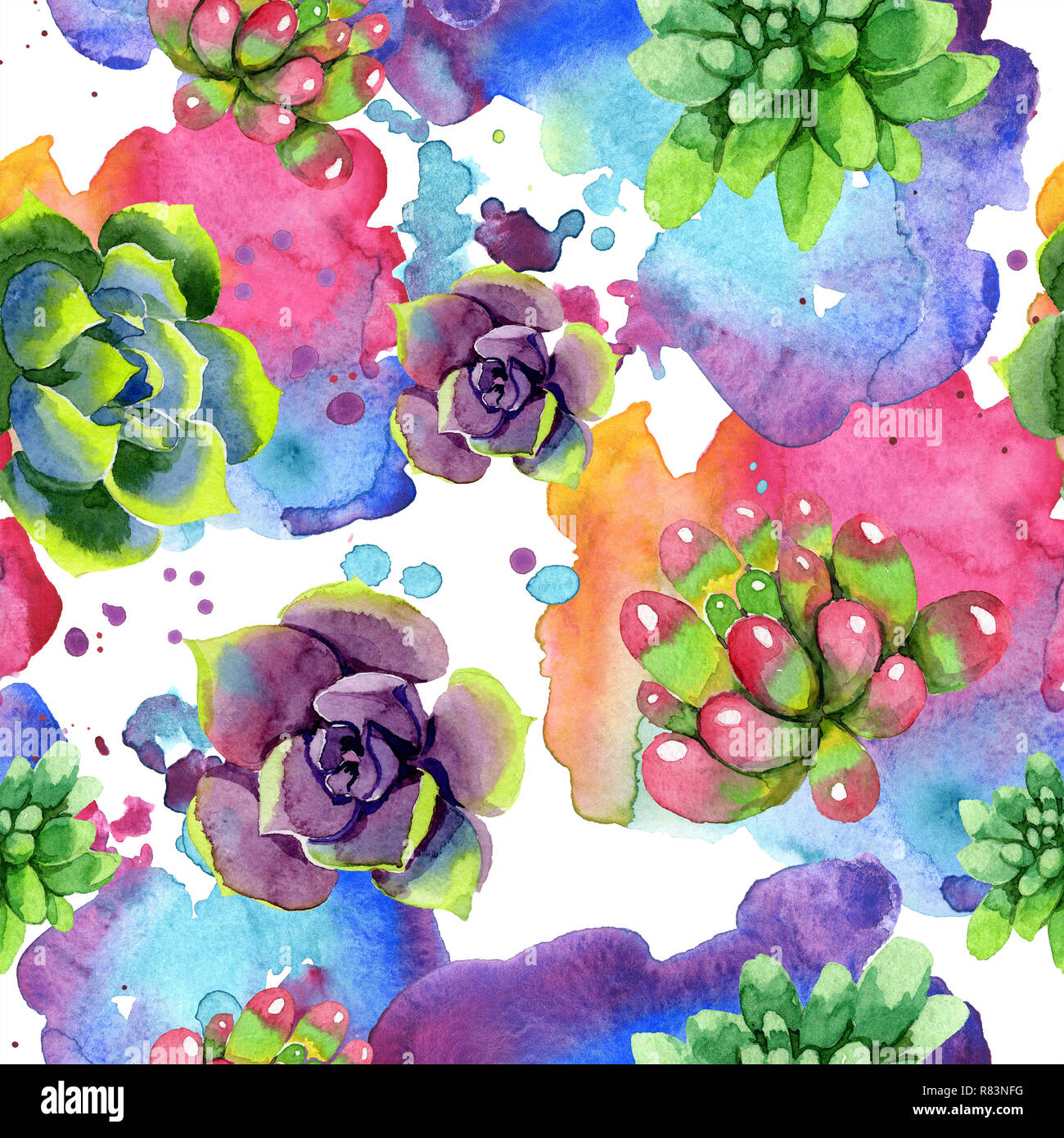 Amazing Succulent Floral Botanical Flower Watercolor Background Illustration Set Seamless Background Pattern Fabric Wallpaper Print Texture Stock Photo Alamy
