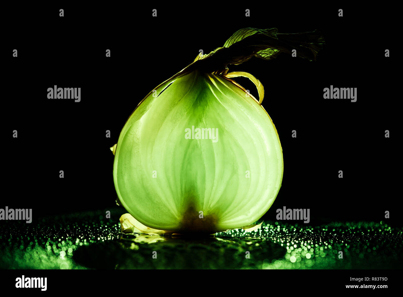 slice of raw onion with water drops and neon green back light on black background - Stock Image